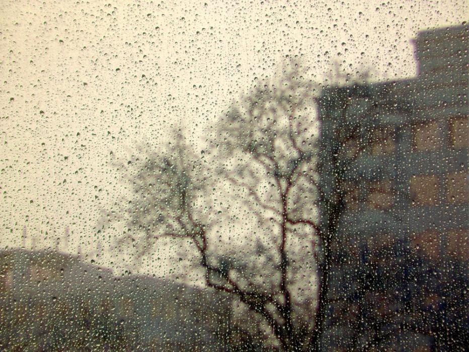 photoblog image Zyrynology: In a Sentimental Mood