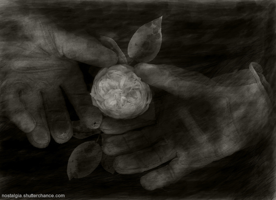 photoblog image In The Garden Of Nostalgia: Verboten Touch