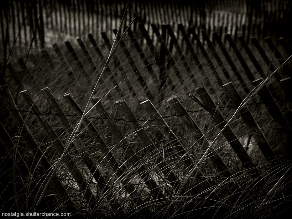photoblog image Sketches From The Forgotten Coast: The Fences We Build